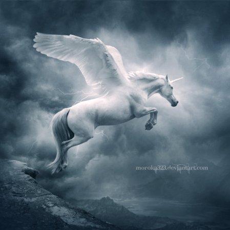 __Unicorn_II___by_moroka323