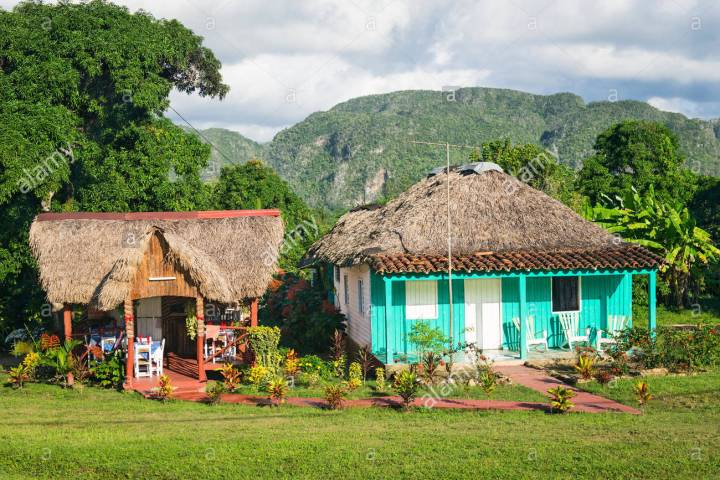 cuba-vinales-wooden-wood-colonial-house-palm-tree-leaves-roof-guest-en9wxr