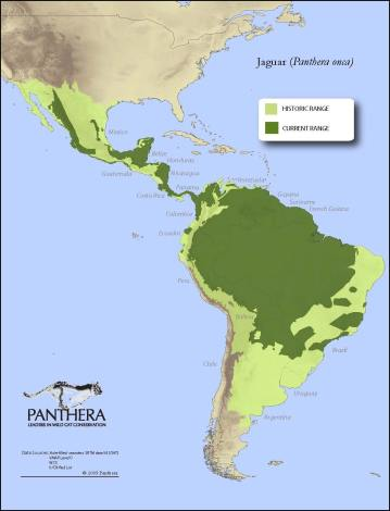 jaguar-range-map.jpg