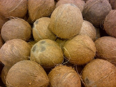 coconut-bangladesh.jpg